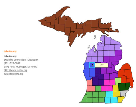 Disability Network Michigan Flash Map